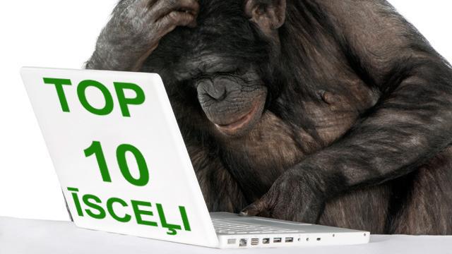 chimp-laptop-top10
